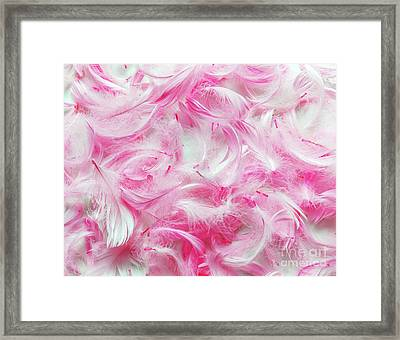 Pink Feathers Background Framed Print