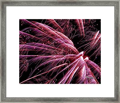 Framed Print featuring the photograph Pink Flamingo Fireworks #0710 by Barbara Tristan