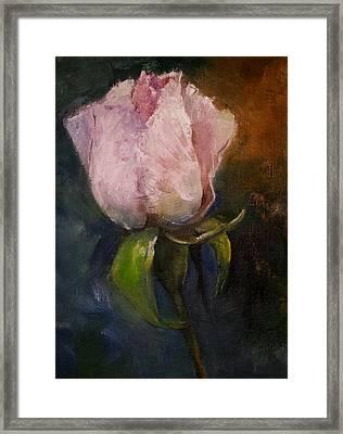 Pink Floral Bud Framed Print