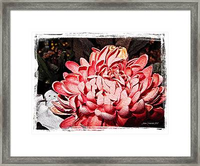 Framed Print featuring the photograph Pink Flower by Joan  Minchak