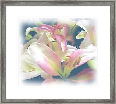 Pink Flower Framed Print by Ralph Liebstein