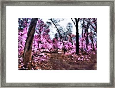 Pink Forest Framed Print