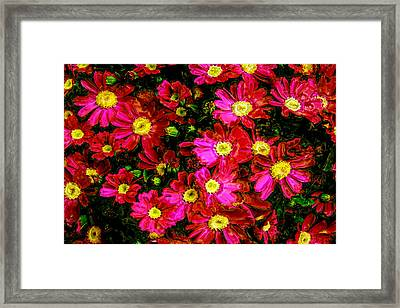 Pink Friends Framed Print by Phill Petrovic