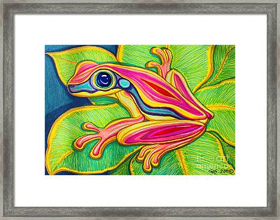 Pink Frog On Leafs Framed Print by Nick Gustafson