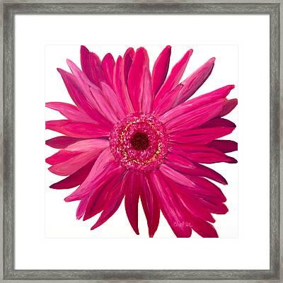 Pink Gerber Framed Print by Chelle Fazal