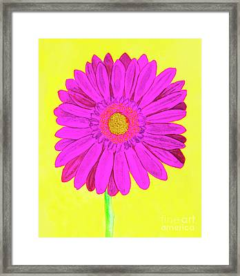 Pink Gerbera On Yellow, Watercolor Framed Print