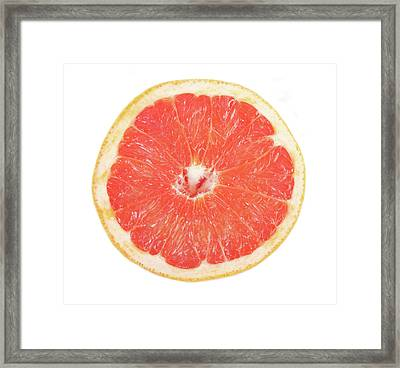 Pink Grapefruit Framed Print by James BO  Insogna