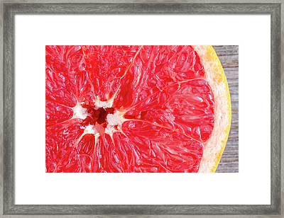 Pink Grapefruit Framed Print by Teri Virbickis