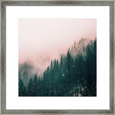 Pink Haze Framed Print by Suzanne Carter