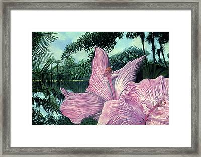 Pink Hibiscus Framed Print by Stephen Mack