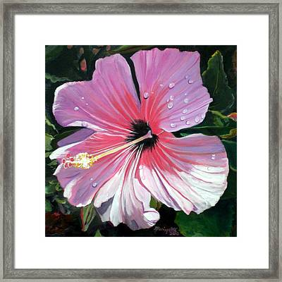 Pink Hibiscus With Raindrops Framed Print