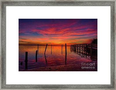 Pink Horizon Framed Print
