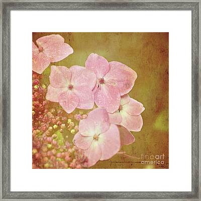 Framed Print featuring the photograph Pink Hydrangeas by Lyn Randle