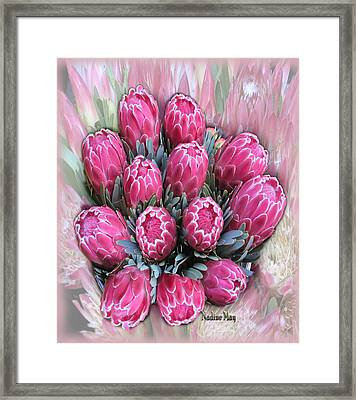 Pink Ice Framed Print by Nadine May