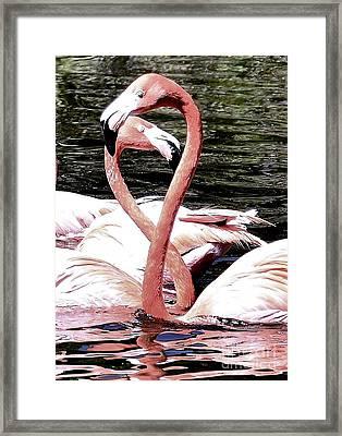 Pink Infinity Framed Print