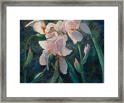 Pink Iris Framed Print by Jimmie Trotter