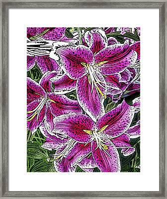 Pink Lillies Framed Print by Ann Tracy