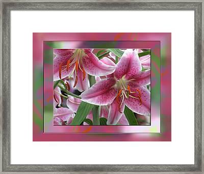 Pink Lily Design Framed Print by Debra     Vatalaro