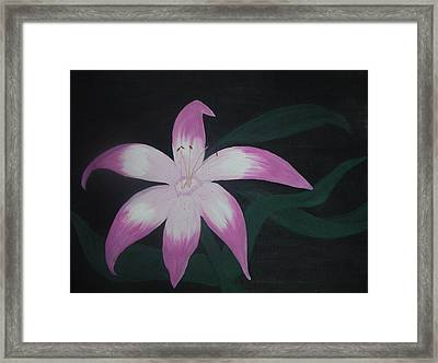 Pink Lily Framed Print by Melanie Blankenship