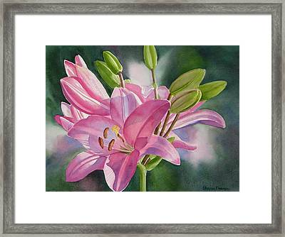 Pink Lily With Buds Framed Print by Sharon Freeman