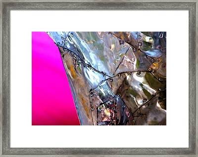 Framed Print featuring the photograph Pink Lustre  by Prakash Ghai