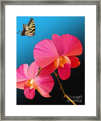 Pink Lux Butterfly Framed Print