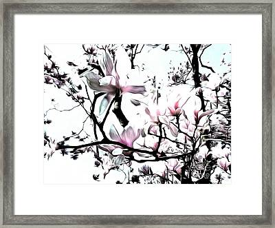 Framed Print featuring the photograph Pink Magnolia - In Black And White  by Janine Riley