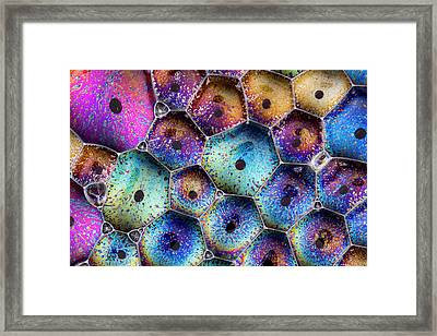Framed Print featuring the photograph Pink Master Bubble by Jean Noren