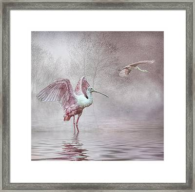 Pink Mist Framed Print by Brian Tarr