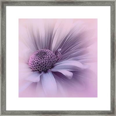 Framed Print featuring the photograph Pink Mist by Darlene Kwiatkowski
