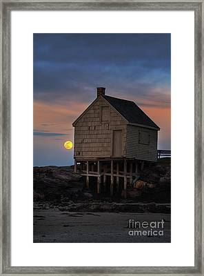 Pink Moon At Willard Beach Framed Print by Scott Thorp