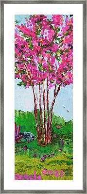 Pink Myrtle Framed Print