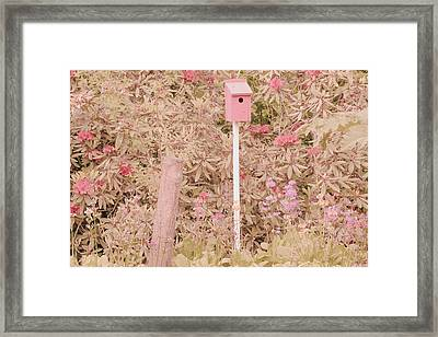 Framed Print featuring the photograph Pink Nesting Box by Bonnie Bruno