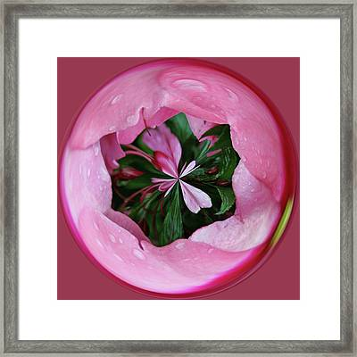 Framed Print featuring the photograph Pink Orb by Bill Barber