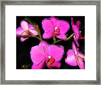 Framed Print featuring the photograph Pink Orchids by Dennis Lundell