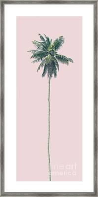 Pink Palm Framed Print