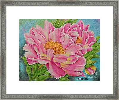 Pink Peonies Framed Print by Sharon Patterson