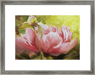 Pink Peony Print Framed Print by Patti Trostle