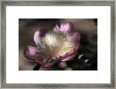 Pink Perfection Framed Print by Donna Kennedy
