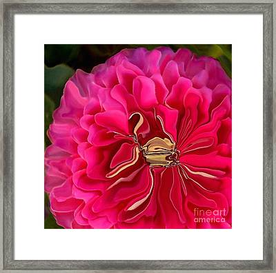 Pink Perky Zinna  Framed Print by Patricia A Williams