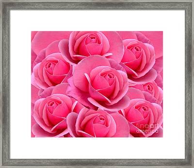 Pink Pink Roses Framed Print