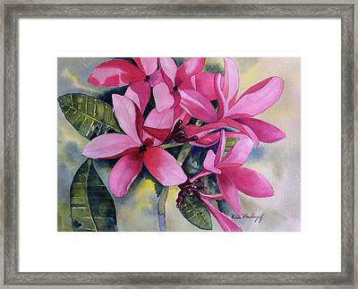 Pink Plumeria Flowers Framed Print