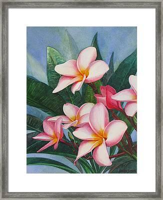 Pink Plumerias Framed Print by Karen  Sioson