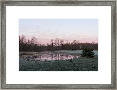 Pink Pond - A Peaceful Daybreak On The Farm Framed Print by Georgia Mizuleva