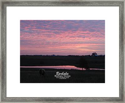 Pink Pond And Cow #5110 Framed Print
