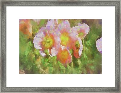 Pink Poppies 2 Impression  Framed Print by Linda Brody