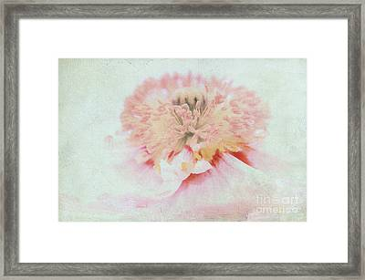 Pink Poppy Framed Print by Angela Doelling AD DESIGN Photo and PhotoArt