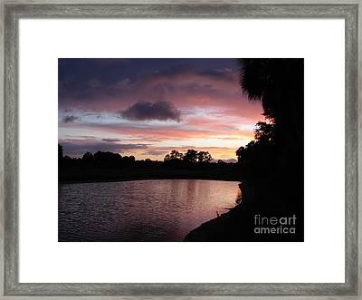 Pink Framed Print by Priscilla Richardson