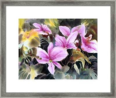 Pink Prize Framed Print