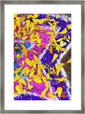 Pink Purple And Petals Framed Print